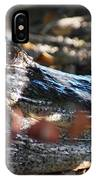 Gator In The Shade IPhone Case