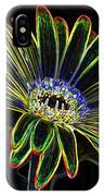 Gerbera Glow 1 IPhone Case