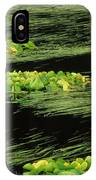 Grasses And Lilies In Beaver Pond IPhone Case