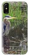 Great Blue Heron At Deboville Slough 2 IPhone Case
