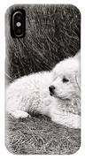 Great Pyramise Pups IPhone Case