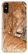 Greater Kudu Mother And Baby IPhone Case