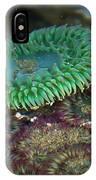Green Anemone IPhone Case