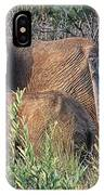 Greener Pastures IPhone Case