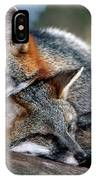Grey Foxes IPhone Case