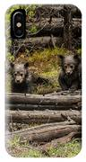 Grizzly Triplets After Rain IPhone Case