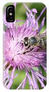 Honeybee On Ironweed IPhone Case
