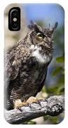 Hoot Hoot IPhone Case