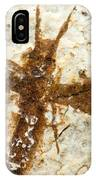Insect Fossil IPhone Case