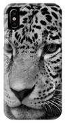 Jaguar In Black And White II IPhone Case