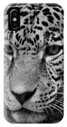 Jaguar In Black And White II IPhone Case
