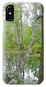 Jean Lafitte Swamp IPhone Case