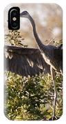 Juvenile Blue Heron IPhone Case