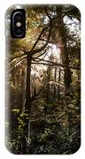 Light In The Forest IPhone Case
