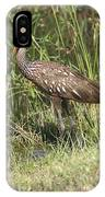 Limpkin In The Glades IPhone Case