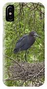 Little Blue Heron Nesting Texas IPhone Case