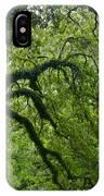 Live Oak Tree At Oak Alley Plantation IPhone Case