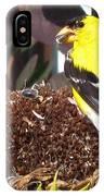 Male American Goldfinch IPhone Case
