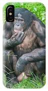 Male Bonobo IPhone Case