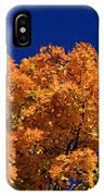 Maple Tree In Autumn IPhone Case