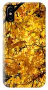 Maple Tree In Yellow Fall Colors IPhone Case
