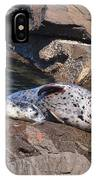 Mom And Baby Seal IPhone Case