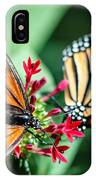 Monarch Danaus Plexippus IPhone Case