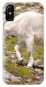 Mountain Goat On Mount Evans IPhone Case