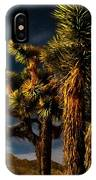 Night Desert IPhone Case