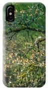 Nisqually Wildlife Refuge IPhone Case