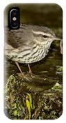 Northern Waterthrush IPhone Case