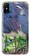 Pair Of Tricolored Heron At Nest IPhone Case