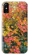 Pallette Of Fall Colors IPhone Case