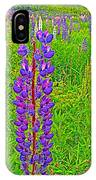 Purple Lupine On Campobello Island-nb IPhone Case