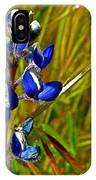 Pygmy-leaved Lupine In Antelope Valley Poppy Preserve-california IPhone Case