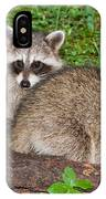Raccoons IPhone Case
