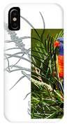 Rainbow Lorikeet IPhone Case