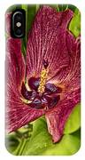 Red Tropical Tree Flower IPhone Case