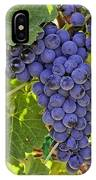 Red Wine Grapes Hanging On The Vine IPhone Case