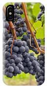 Red Wine Vineyard 4 IPhone Case