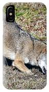 Red Wolf IPhone Case