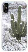Saguaro Cactus After Rare Desert IPhone Case