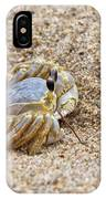 Sand Crab IPhone Case