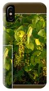 Sea Grapes IPhone Case