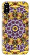 Kaleidoscope 43 IPhone Case