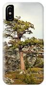 Sierra Landscape IPhone Case