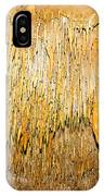 Stalactite Formations In Florida IPhone Case