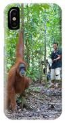 Sumatran Orangutan IPhone X Case