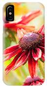 Summer Soltice IPhone Case