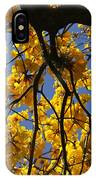 Tabebuia Tree Blossoms IPhone Case